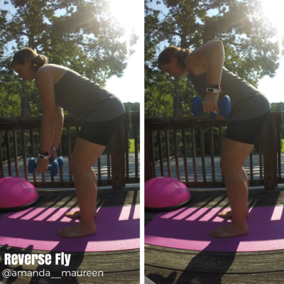 Reverse Fly, Total Body Workout, BOSU, Workout Wednesday, Strength Training